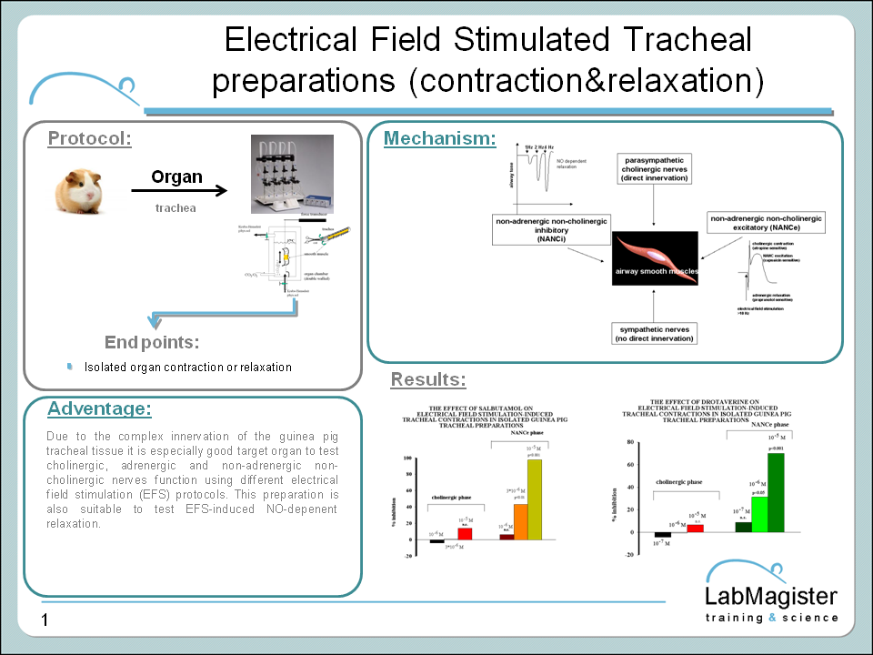 Labmagister EFS tracheal preparation
